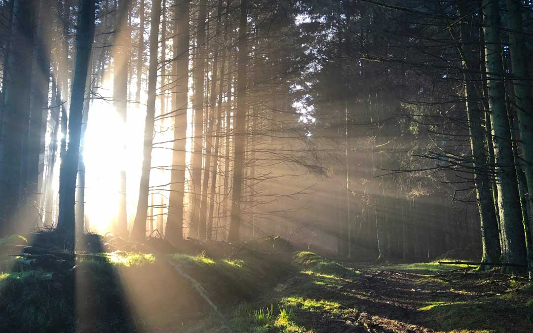 3 Myths of Mediumship. Unveiling the Mystery